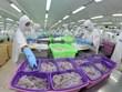 Buscan Vietnam y Egipto impulsar nexos comerciales
