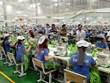 (Televisión) Cuarduplican IED colocada en nuevos proyectos de Vietnam en enero