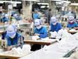 (Televisión) Empresas vietnamitas aprovechan oportunidades en medio del COVID-19