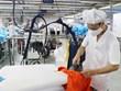 Optimista Oxford Economics sobre perspectivas de crecimiento de Vietnam