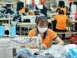 Exportaciones de Vietnam alcanzan casi 146 mil millones de dólares