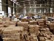 Vietnam espera alcanzar 14 mil millones de dólares en exportaciones silvícolas en 2021