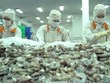 Apunta Vietnam a alcanzar cuatro mil millones de dólares por exportaciones de camarón en 2021