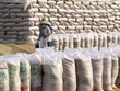 Vietnam será el tercer mayor exportador mundial de arroz en 2022