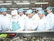 Premier vietnamita visita empresa líder de exportación de camarones en mundo