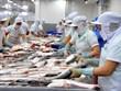 Productos acuáticos de Vietnam enfrentan dificultades en mercado doméstico
