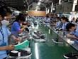 Vaticinan alto aumento en exportaciones de calzado de Vietnam en 2019