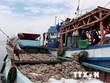 Delegación europea elogia esfuerzos vietnamitas en implementación de medidas contra la pesca ilegal