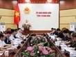 Estudia empresa de Hong Kong implementación de proyecto de energía eólica en provincia vietnamita