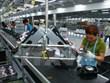 Aumenta en ciudad vietnamita atracción de inversión extranjera