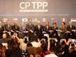 Tailandia evalúa su posible incorporación al Acuerdo Transpacífico