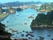 Planea provincia de Quang Ninh impulsar demanda turística