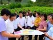 Establecen provincia vietnamita y Banco Mundial cooperación estratégica en 2020-2025