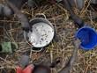 Vietnam apoya soluciones diplomáticas y preventivas contra conflictos en África Occidental y el Sahel