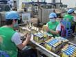 Vietnam se sitúa como el segundo mayor exportador en el mercado estadounidense