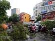Simpatiza Laos con Vietnam por daños del tifón Noul