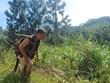 Vietnamitas se benefician del proyecto de gestión de recursos naturales Green Annamites