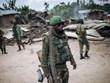 Vietnam dispuesto a respaldar a los países de África que salen de conflictos