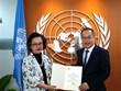 Aprecia órgano de ONU avances de Vietnam en impulso de desarrollo sostenible
