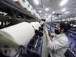 Descarta la India aplicación de impuestos antidumping a fibras artificiales vietnamitas