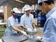 Sector privado juega papel cada vez más importante en la economía vietnamita