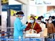 Pasajeros aéreos deben realizar declaración médica electrónica en Vietnam