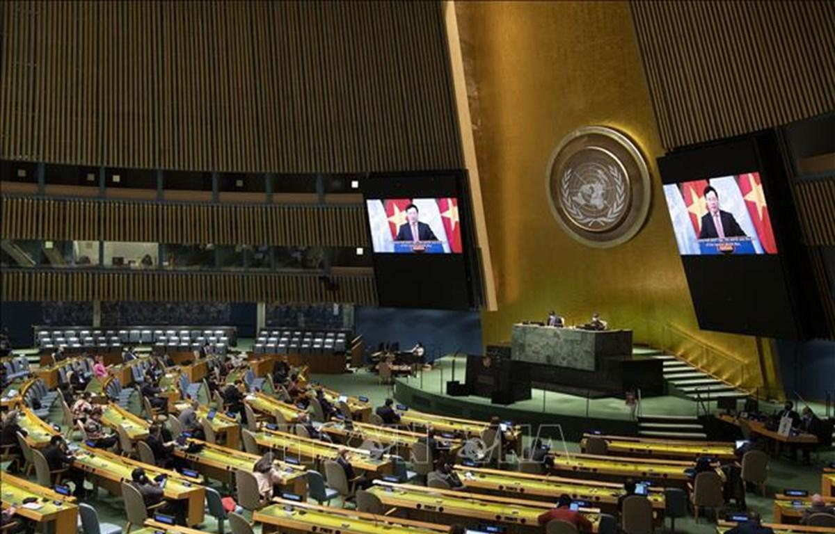 Vietnam y Consejo de Seguridad: de participante a socio para la paz sostenible