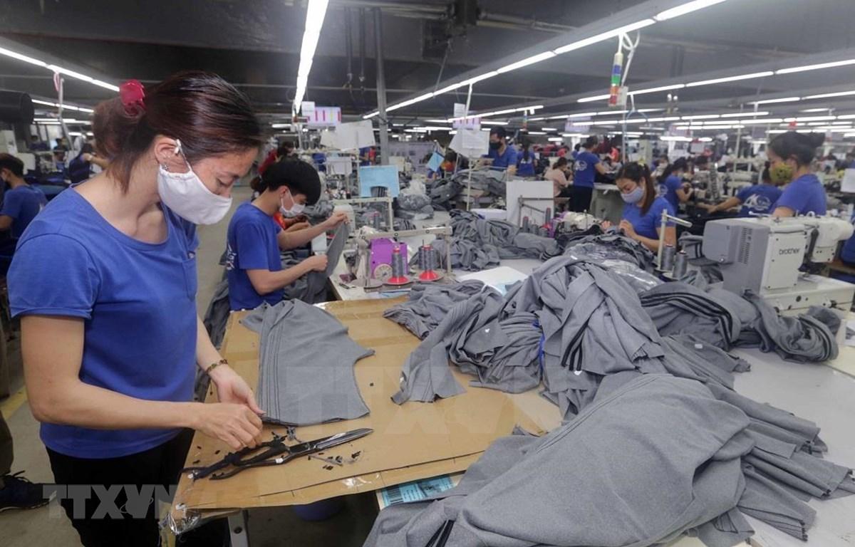 Empresas vietnamitas afrontan dificultades en medio de pandemia