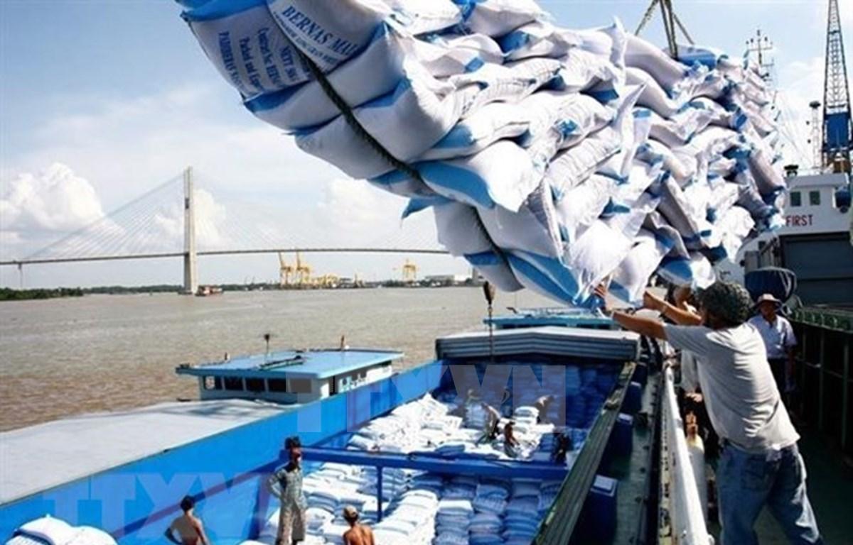 Verifica Vietnam volumen de arroz en puertos para plan de exportación