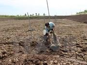 Vietnam y Japón juntan manos en adaptación al cambio climático
