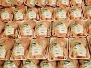 Vietnam considera investigación sobre pollos importados de EE.UU.