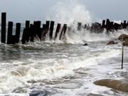 Región norteña de Vietnam en alerta por afectaciones de tifón Mujigae