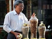 Kien Cuong – marca de visón café de Vietnam