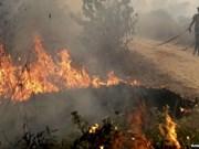 Contaminación atmosférica en Indonesia se expande a Filipinas