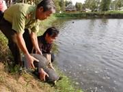 Continúa apoyo danés a Vietnam en preservación de biodiversidad