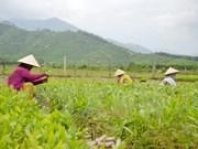 Participa Vietnam en Conferencia de Cancilleres de ASEM