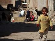 Vietnam asiste a feria caritativa en Egipto