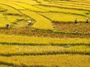 Publican primer informe anual de turismo de Vietnam