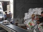 Alcanza exportación de arroz vietnamita un abrupto aumento en volumen