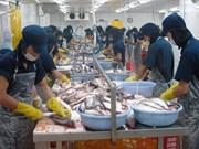 Empresas belgas amplían la inversión en Vietnam