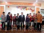 Vietnamitas en ultramar festejan por Año Nuevo Lunar