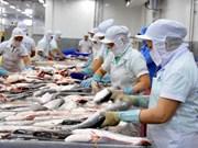 Aumenta exportación de pescado Tra vietnamita a Reino Unido