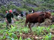 Vietnam planea reducir el número de hogares pobres en 2016