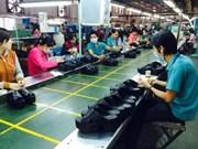 Sector del calzado de Vietnam se prepara para potenciar oportunidades del TPP