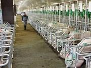 Premier aprueba prorroga del programa de biogás para ganadería