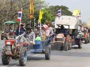 Tailandia: Partido Demócrata pide modificaciones de constitución temporal