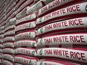 Tailandia elabora estrategia a largo plazo para el arroz