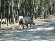 Desmienten información inexacta sobre parque zoológico de Vietnam