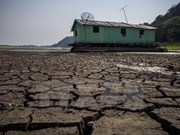 Vietnam y Holanda impulsan nexos de asociación en lucha contra cambio climático