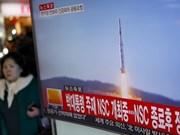 Vietnam exhorta soluciones pacíficas para asuntos de Península Coreana